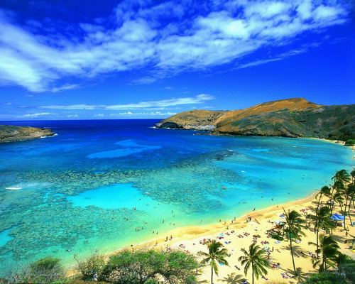 Hawaii is the number one most popular honeymoon destination in the world and